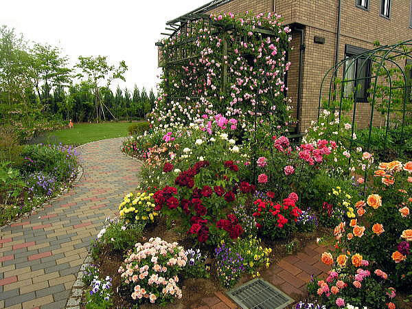 Композиция с розами в саду