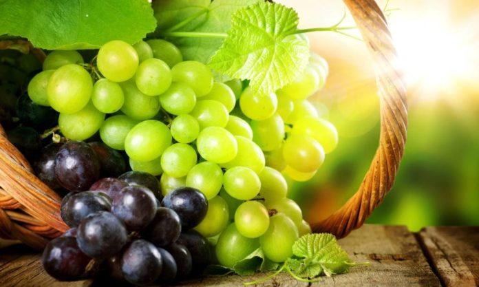 О винограде