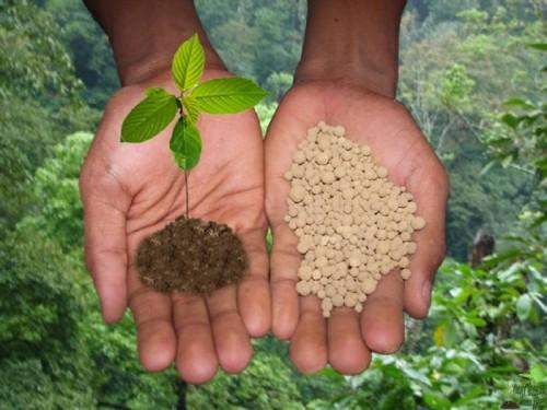 Особенности использования минеральных удобрений