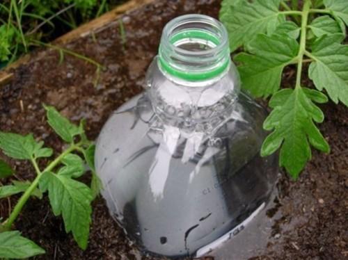 Выручают пластиковые бутылки