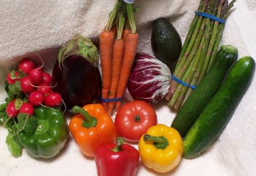 Биология овощей и фруктов
