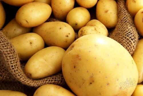 Картофель из семян и в соломе