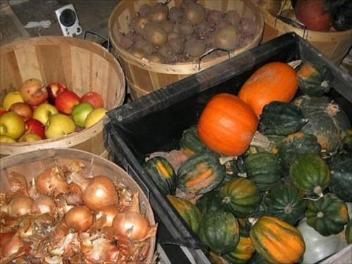 Как сохранить урожай. Правила хранения овощей