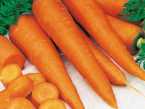 Морковь – история культуры