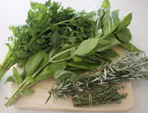 Общие правила сбора и хранения пряно-вкусовых трав