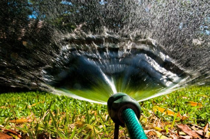 Пять способов полива огорода