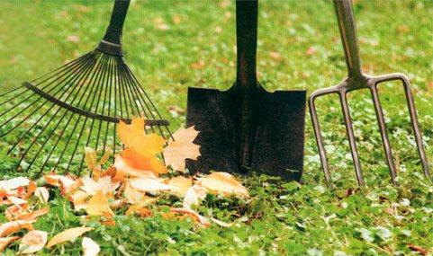 Садовые инструменты – полезные советы