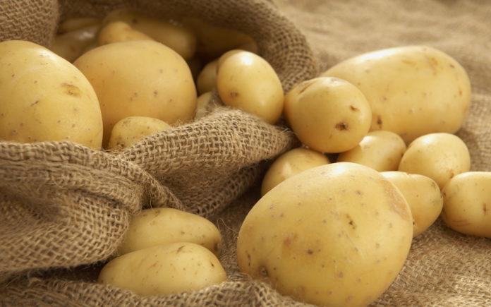 С такими сортами картошки точно не пропадем!