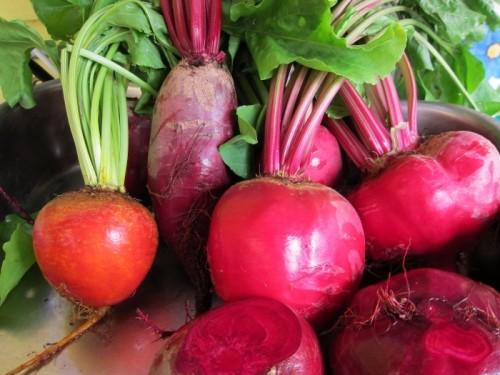 Целебные овощи. Свекла