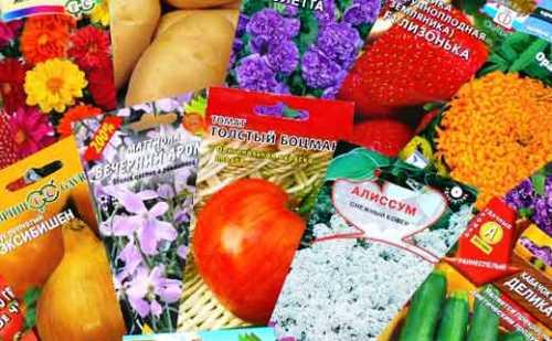Покупайте семена с запасом, но не впрок!