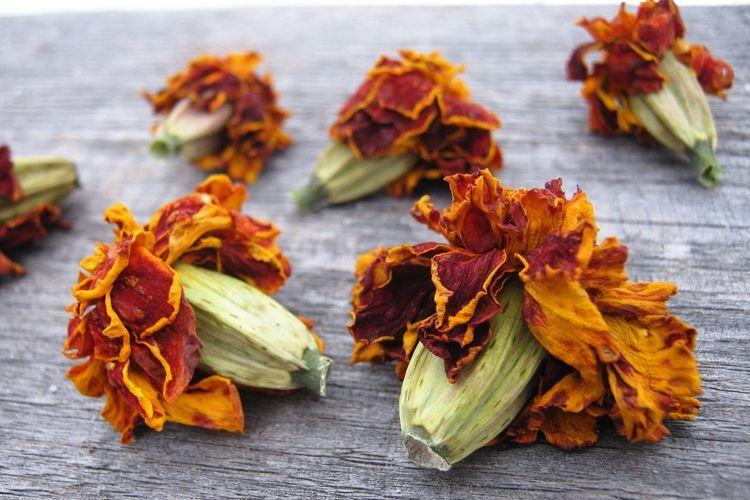 Сухие соцветия бархатцев